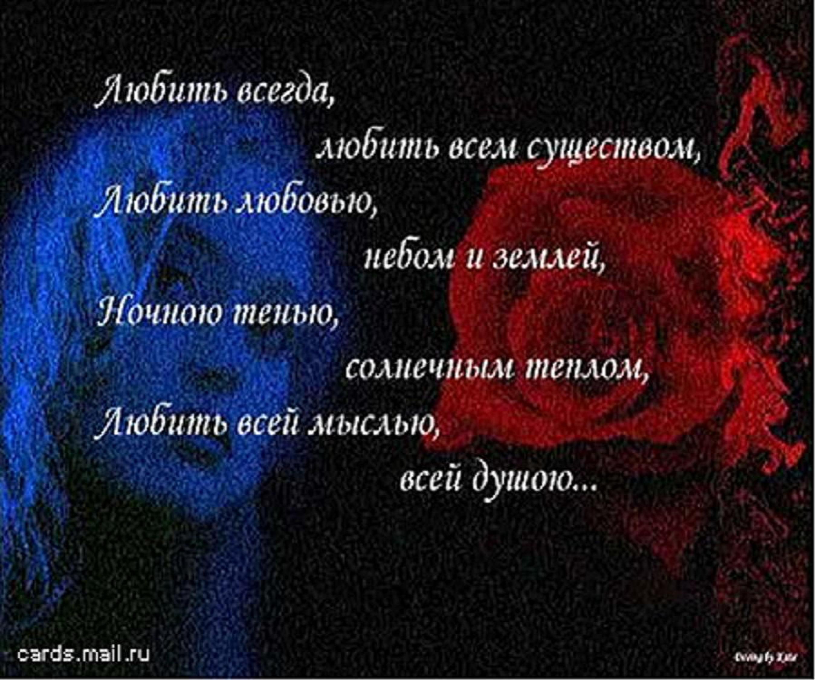 Статусы на турецком языке про любовь с переводом на русский